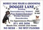 Doggie Lane Petshop